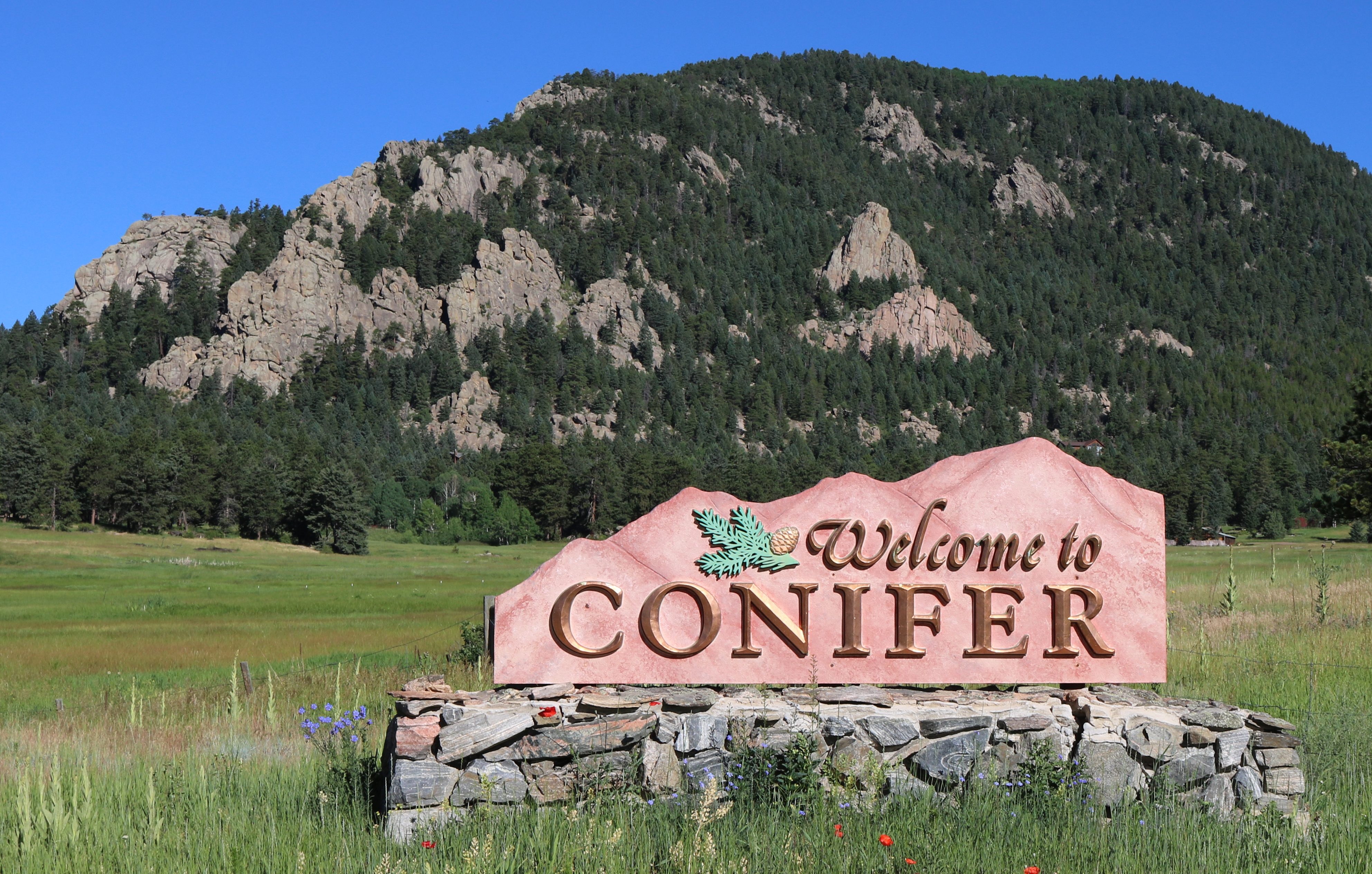 conifer colorado