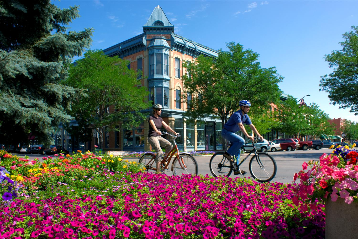 fort collins colorado
